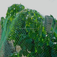 Jiahe factory price round wire anti bird net for vineyard/agricultural anti bird net