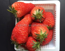 Disposable clear plastic strawberry packaging punnet container