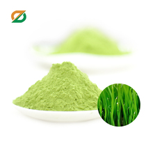 Young Organic Barley Grass Concentrate Juice (powder)Extract