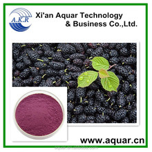 100% Natural Healthcare Mulberry Fruit Extract Powder in Bulk