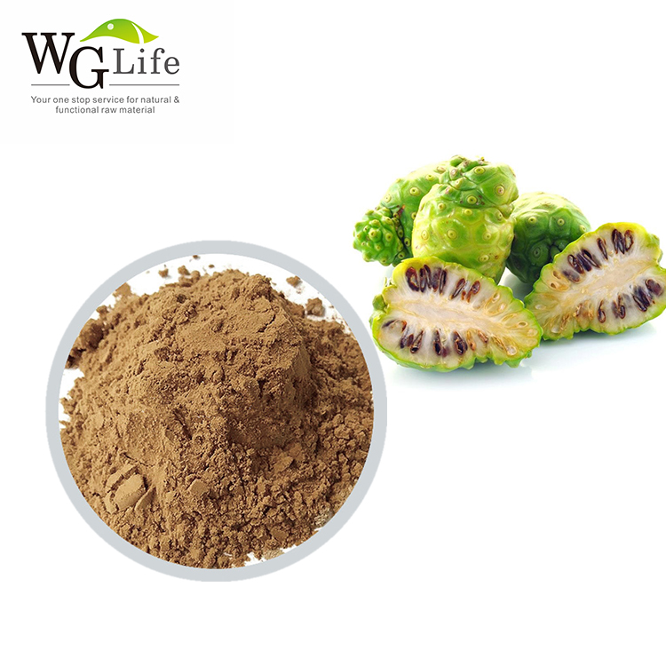 Factory high quality noni juice powder benefits
