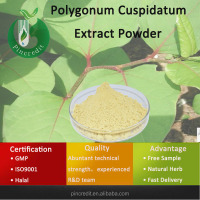 Acai Powder/Acai Berry Powder/Polygonum Cuspidatum Extract Powder