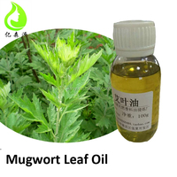 Natural Mugwort Leaves Oils Chinese Traditional