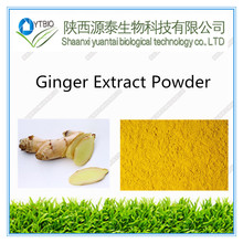 Best Quality Benefits Of dried Ginger extract Powder