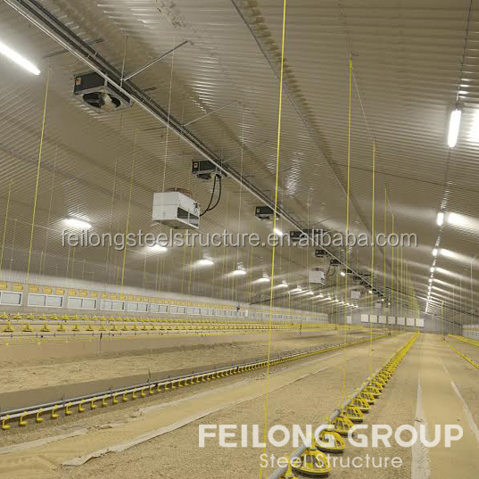 High quality farms chicken houses and poultry farming