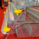 metal quail cages for sale