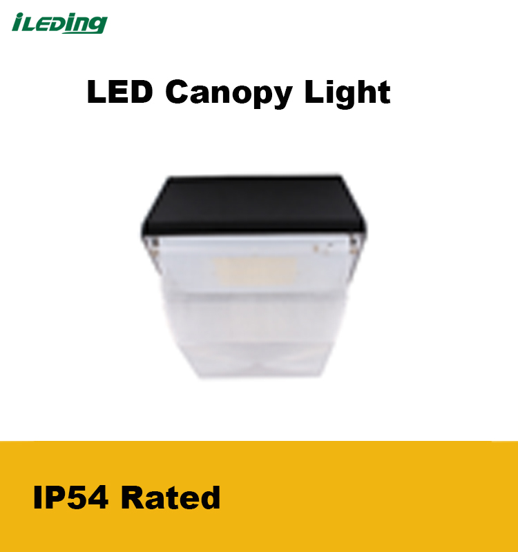 High lumen 5 years warranty LED Canopy Light