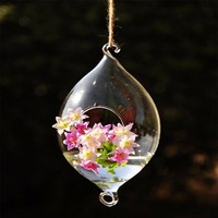hanging oval shapedifferent types glass vase with rope decoration