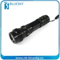 Hot selling torch flashlight with charger