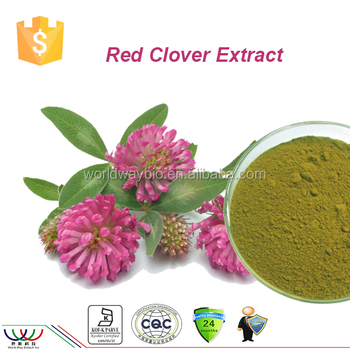 Natural women healthy food 40% isoflavone HACCP Kosher FDA cGMP red clover p.e. red clover extract powder