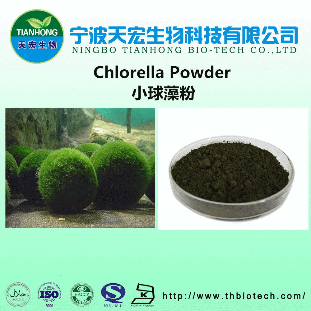 100% natural chlorella vulgaris powder/organic chlorella powder
