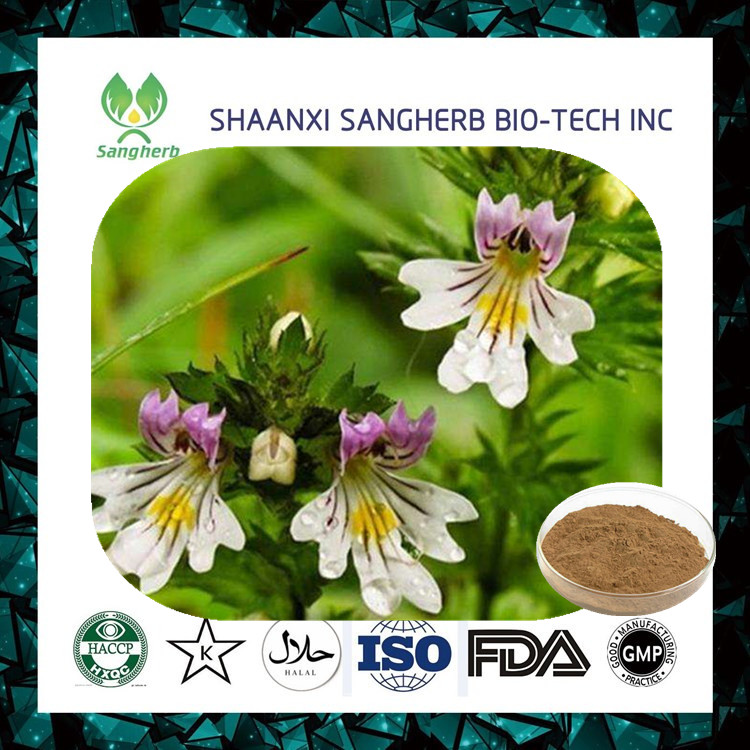 Made in China organic eyebright p.e. /Euphrasia officinalis of National Standard