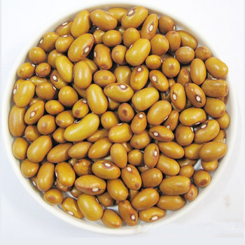 Yellow kidney beans all kinds of dried kidney beans