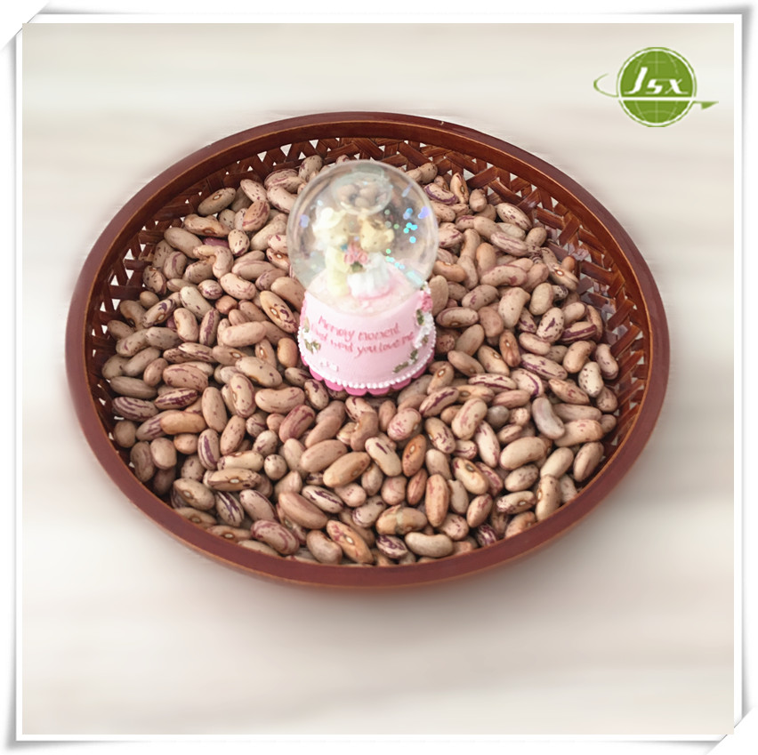 JSX Red and White Speckled Kidney Beans Price Size 180-200pcs/100g 200-220pcs/100g
