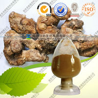 Natural Manyflower Solomonseal Rhizome Extract 10:1 20:1 Ratio Extract