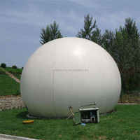 Biogas Digester With Gas Holder