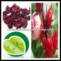 100% natural Dried Roselle extract Tea/Roselle P.E.powder