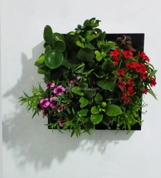 sl213 living plant wall planter
