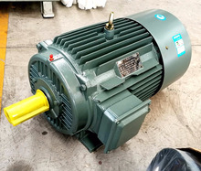 YE3 series 22kw 3 phase electric ac motor