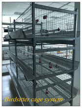 egg layer poultry house design chicken farm bird breeding cage for sale