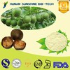 2016 New Certified Organic Natural Sweetener/Mogrosides, Mogroside V / Monk Fruit Extract Powder Luo Han Guo Extract Powder