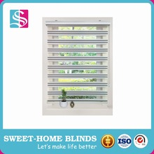 Simple Install Zebra Roller Blinds/ Zebra Roller Shutter/Zebra curtains