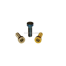 Low Head Socket Cap Screw Fastener Din7984 screw