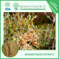 Hot Sale Chinese Dodder Seed Extract 10:1 High Quality Chinese Dodder Seed Extract Powder