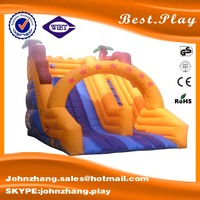Fantastic airtech inflatable water slip slide, great fun inflatable bounce for kids, inflatable games for rental and sale
