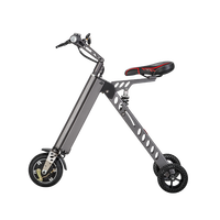 China Cheap Easy Carrier Lithum Folding Electric Bike