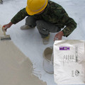 WPS Negative Waterproof Mortar Brands Waterproofing Cement Waterproofing