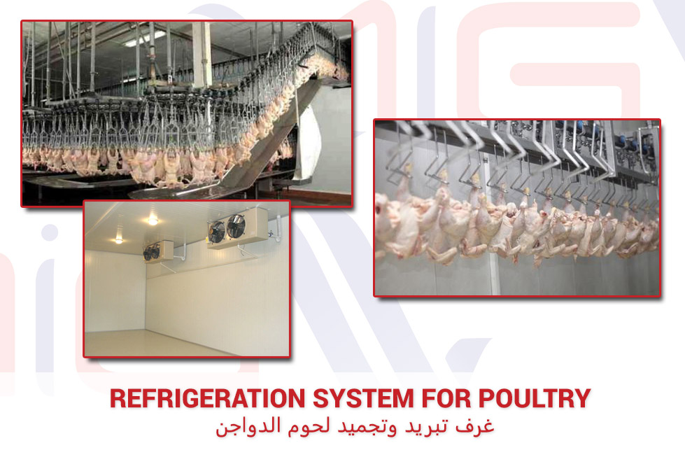 Refrigeration system for poultry