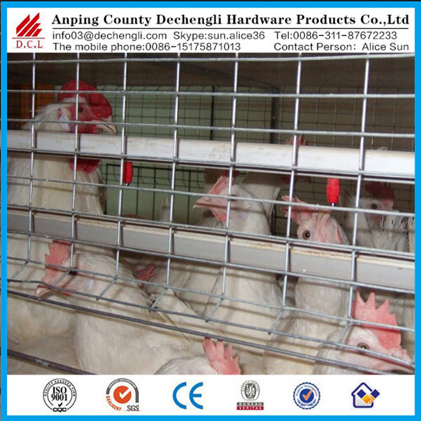 design rabbit cage,Chicken cage ,pigeon cage