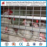 design rabbit cage,Chicken cage ,pigeon cage