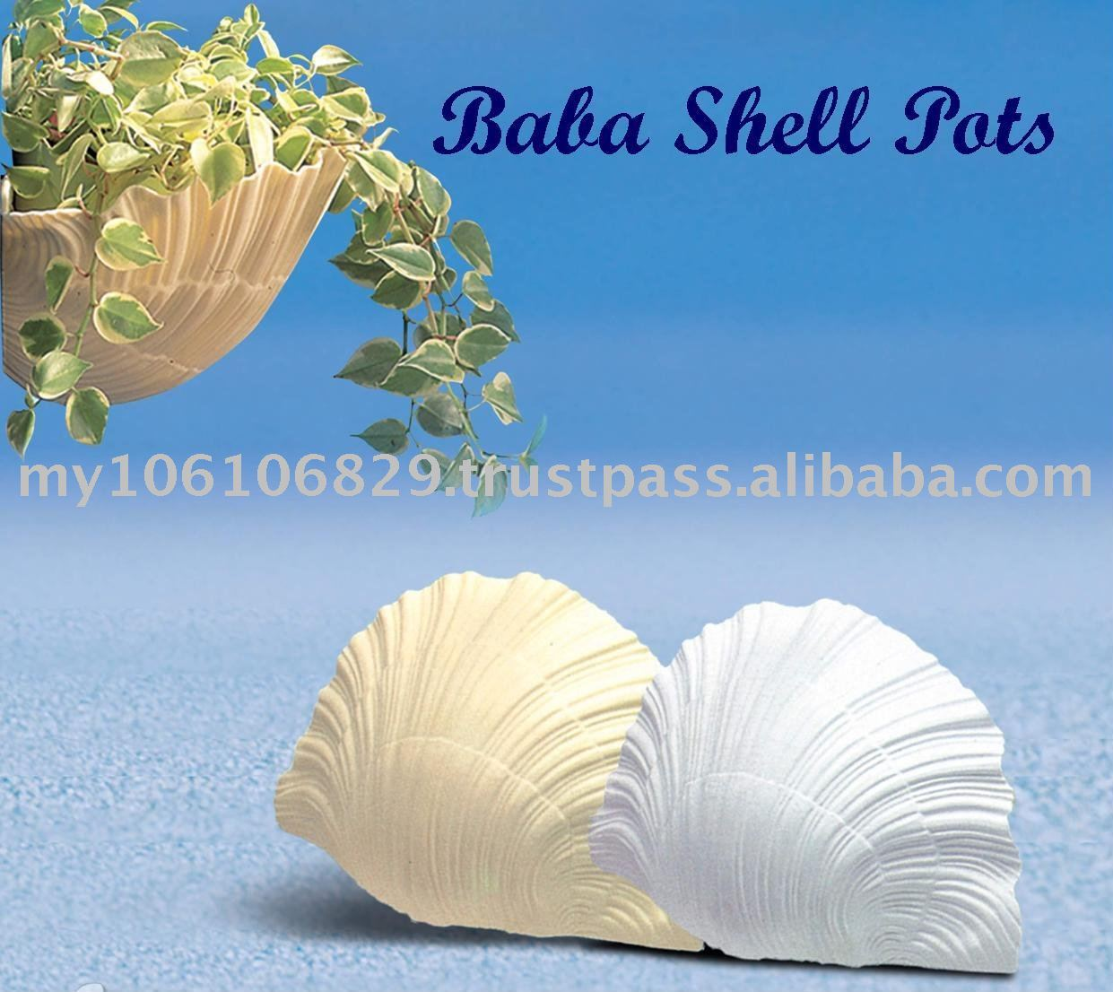 Baba Shell Flower Pots