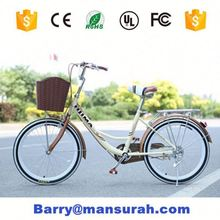 Public Bicycle Renting System/26 Steel City Bike / Rent Bike / Public Bicycle
