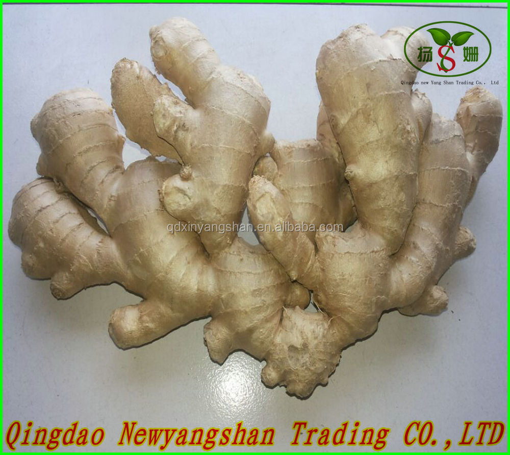 Prices Of Ginger Dried And Ginger Fresh