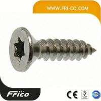 Torx Countersunk Head Security Tapping Screw