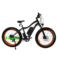 Economic and Efficient low price electric bike Competitive Price