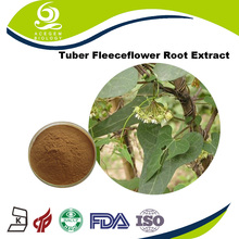 Factory Price Tuber Fleeceflower Root Extract Sex Products For Men
