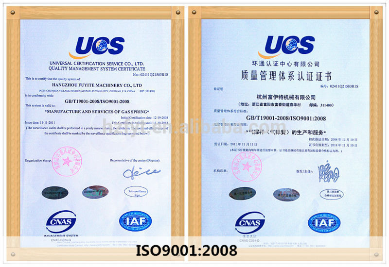 Hot selling Lockable gas springs for medical apparatus(ISO9001:2008)