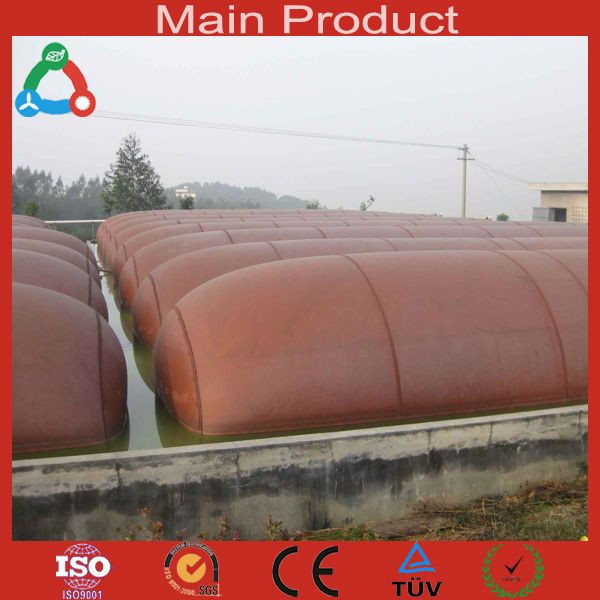 New Products 5Kw Biogas Compressor Portable Biogas Plant Methane Gas Plant