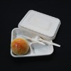 Biodegradable Food Tray Three Compartment Disposable Lunch Tray