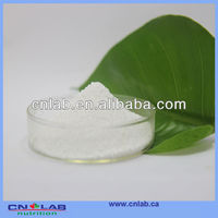 Best price natural saw palmetto fruit extract