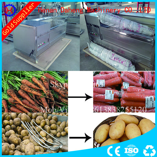 fruit and vegetable washer ginger carrot potato washing machine