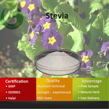 Pure Organic Plant Extract Stevia