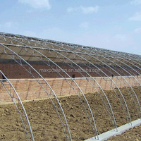 High Quality Galvanized Steel Truss Greenhouse