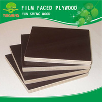 Best price poplar film faced plywood export maldives
