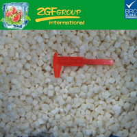 New crop frozen IQF diced whole sliced strips water chestnut