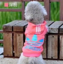 Multicolor into the fall and winter clothes pet clothes small dog clothing